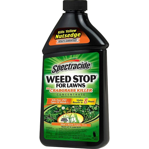Spectacide Weed Stop for Lawns